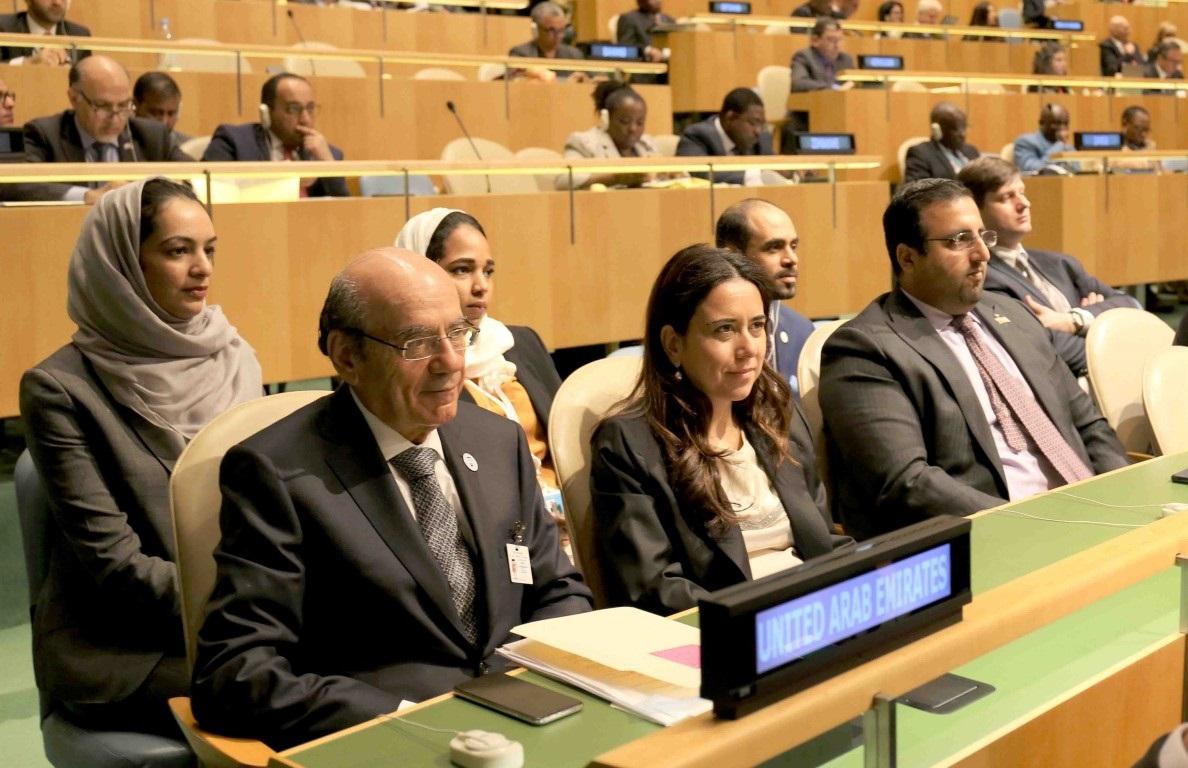 الإمارات: ملتزمون بالحل السياسي في اليمن وسوريا وليبيا !